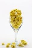 Popcorn i exponeringsglas Royaltyfria Bilder
