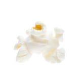 Popcorn kernel. Single popcorn kernel isolated against a white background stock photography