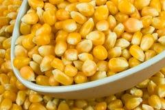 Popcorn Kernels Stock Image