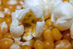 Popcorn and  kernels Royalty Free Stock Images