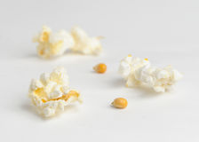 Popcorn kernels and seeds. Three popcorn kernels and two seeds isolated against white background Stock Image