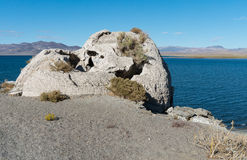 Popcorn Rock at Pyramid Lake, Nevada Royalty Free Stock Image