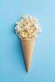 Popcorn in roomijskegels Stock Fotografie