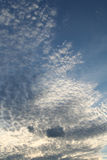 Popcorn Sky. Clouds in the sky during early sunset Royalty Free Stock Photography