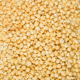 Popcorn texture Stock Photos