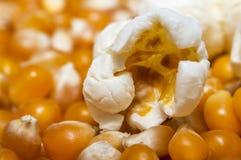 Popcornkärnaslut upp Arkivfoton