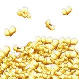 Popcornmuster Köstlicher und bunter nahtloser Hintergrund Stockbild