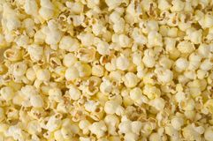 Popcorns. Close-up of salted popcorn texture Stock Photos