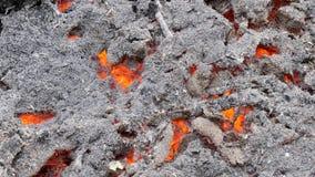 Popiół i węgle od silnego ogienia zdjęcie wideo