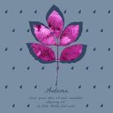 Popiółu liść z akwarela wzorem dla jesień projekta Obraz Stock