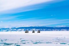 Popielaci samochody zostają na śnieżnej powierzchni Zamarznięty Jeziorny Baikal Obraz Stock