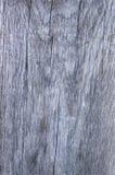 Popielata drewniana fotografii tekstura w górę obraz stock