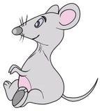 Popielata mysz Obraz Royalty Free
