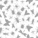 Popielatego sylwetka insekta bezszwowy wzór ilustracji