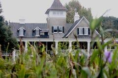 Popielaty i biały południowy dom Zdjęcie Royalty Free