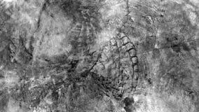 Popielaty i biały beton textured ścienny zbliżenie Obraz Royalty Free