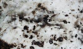 Popielaty i czarny ocieniony grunge cud textured tło zdjęcia stock