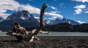Popielaty jezioro i góry w Torres Del Paine parku narodowym, Chil Zdjęcie Royalty Free