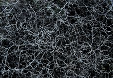 Popielaty naturalny abstrakcjonistyczny tło Obrazy Royalty Free
