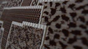 Popielaty tapicerowanie brandnew kanapa patrzeje jak jednostka centralna z elektronicznymi narzędziami zbiory