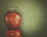 Popiera szkoły Chalkboard z jabłka tłem Obrazy Stock