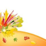 Popiera szkoły tło z liśćmi i ołówkami Zdjęcie Stock