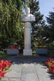 Popiersie Zhukov Volgograd, Rosja Obraz Stock