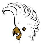 Popinjay bird face Royalty Free Stock Photography