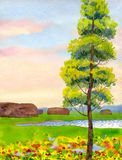 Poplar in the field. Watercolor landscape. In the lush flowering field at the lake among the haystacks is a young poplar Royalty Free Stock Images