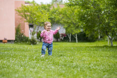 Poplar fluff Stock Photography