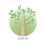 Poplar Tree with Green Leaves. Royalty Free Stock Images