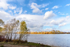 Poplar and Willow Trees Close to the River, in Autumn Stock Photos