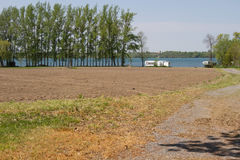 Poplars lining the Lake, Long Point, Prince Edward County, Ontario Royalty Free Stock Images