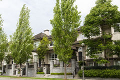 Poplars and Row Houses Stock Image