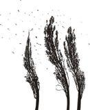 Poplars in the wind vector illustration