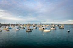 Popołudnie w Monterey okręgu administracyjnym fotografia royalty free