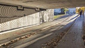 popołudnia asfaltowej jesień kolorowa znakomita ulistnienia droga pogodna Zdjęcia Royalty Free