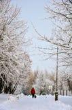 popołudnie marznący zbocza góry kubek overlookiing denną termosu zima Zdjęcie Royalty Free