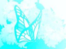 popołudniowe kwiaty motylich późno pastwiska naturalne Fotografia Royalty Free