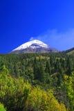 Popo national park. View of the active volcano popocatepetl in popo national park Stock Photography