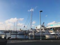 Popołudnie w Auckland Zdjęcia Royalty Free
