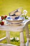 Popo?udniowa herbata Obrazy Royalty Free