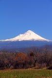 Popocatepetl火山VIII 免版税库存图片