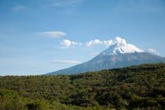 Popocatepetl och skog Arkivbild