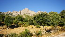 Popolasca peak in corsica Royalty Free Stock Images
