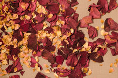 Popourri dried flowers petals Royalty Free Stock Photo