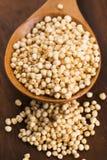 Poppa för Quinoa arkivfoto