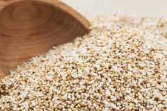 Popped Amaranth Royalty Free Stock Photo