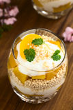 Popped Quinoa, Yogurt and Peach Parfait Stock Images