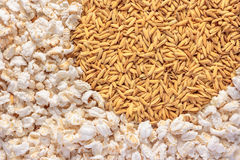 Popped rice as background. Stock Photos